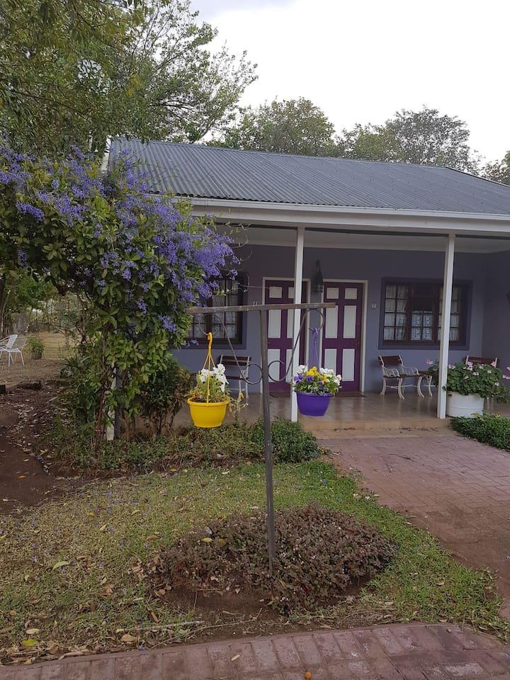 Purple House B& B rooms