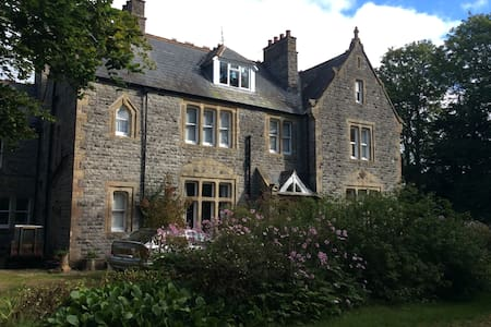 Easy location twin/double room - East Lydford - Bed & Breakfast