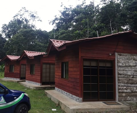 #3Luxury Bungalow in Rainforest.Special offer -25%