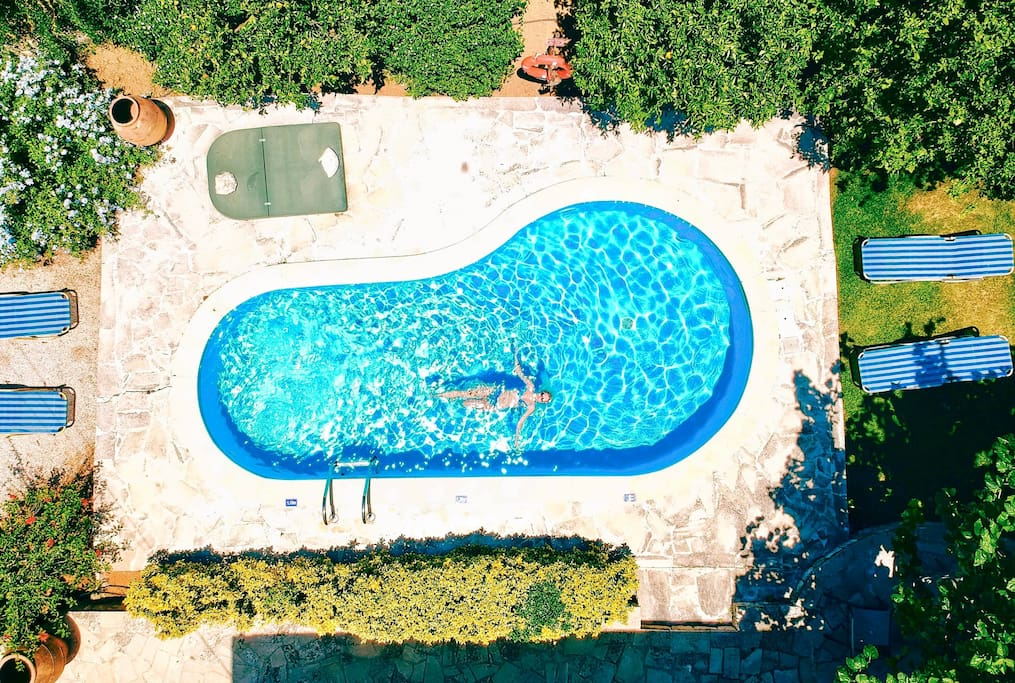 Pool from the air
