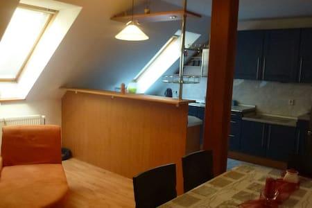 Luxusní apartmán v  Beskydech - Loft