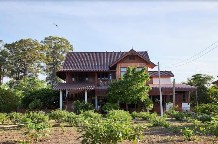 (Jatuporn) Baan Klangsuan, Pa sak River, Saraburi