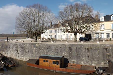 Maison sur île de Loire, proche d'Orléans - Combleux - Appartement