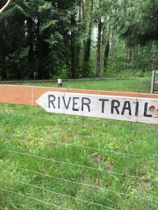 Take me to the river!