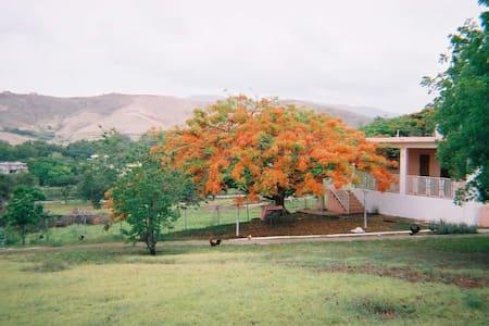Ranchos Elohim