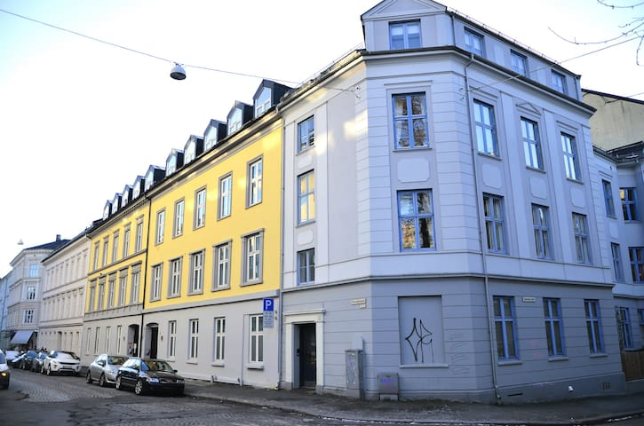 High quality apartment with high ceiling in a classic beatiful builidng. Central location, close to Aker Bryge. Quick & easy access to the airport.