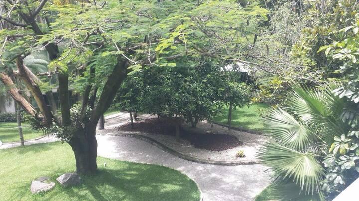 (345) Cómodo loft en el corazón de Cuernavaca