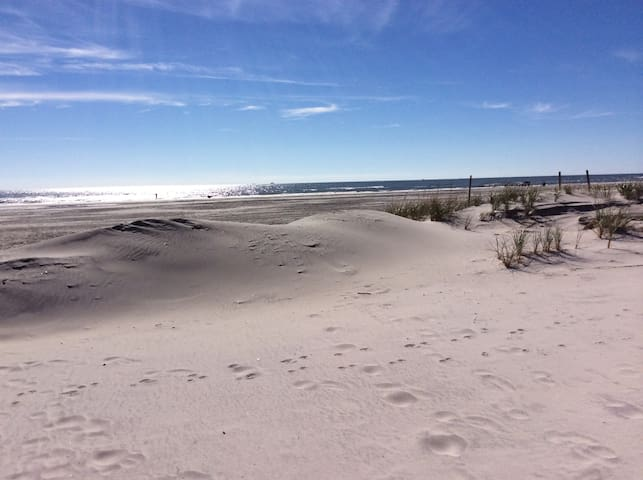 Beautiful beach and dunes, 20th Street South