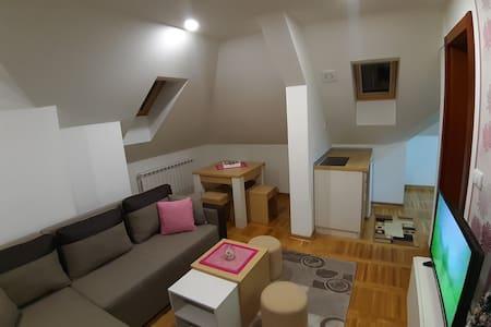 Zlatibor apartman centar