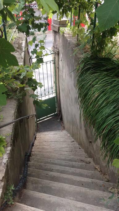 L'escalier qui monte de la rue au jardin.