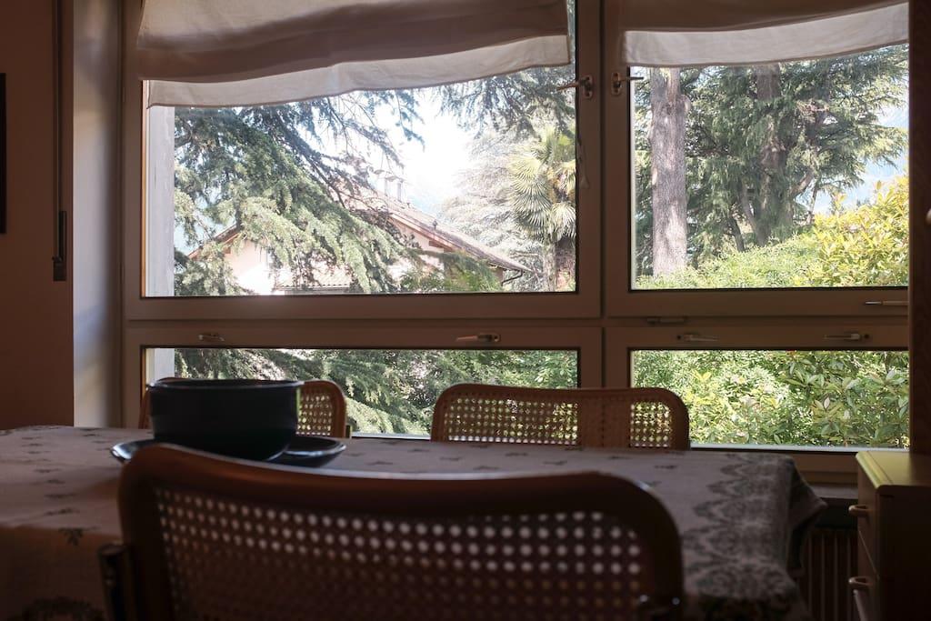Vista dal tavolo in soggiorno
