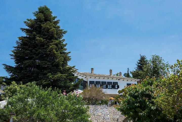 Mansion Mytilineou - Skretaion