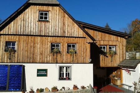 Ferienwohnung in Alleinlage mit toller Aussicht - Selzthal - Departamento