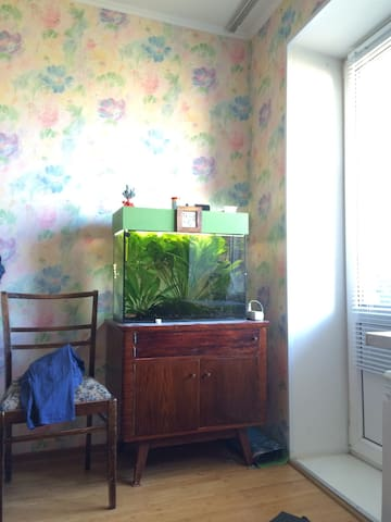 Кровать в моей комнате - Орёл - Apartment