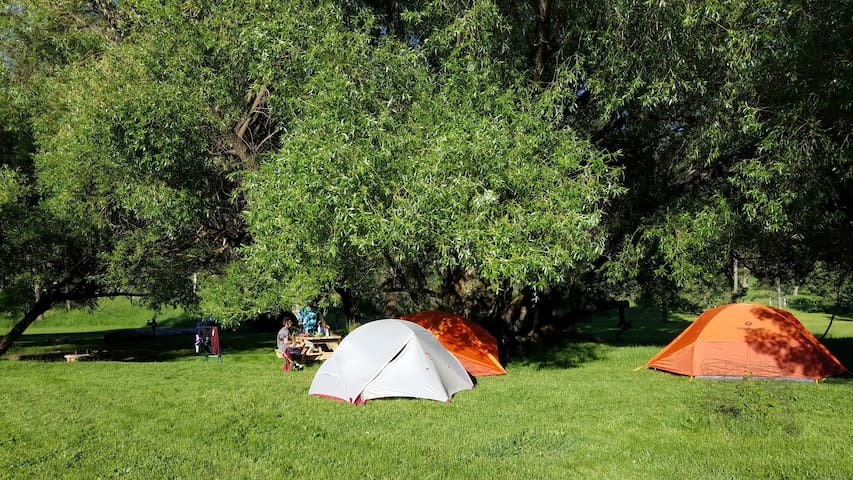 Plenty Star Ranch - Tent Site for 1-4 - No 8