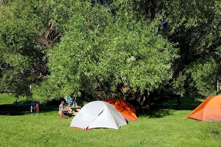 Plenty Star Ranch - Tent Site - No 7 of 8