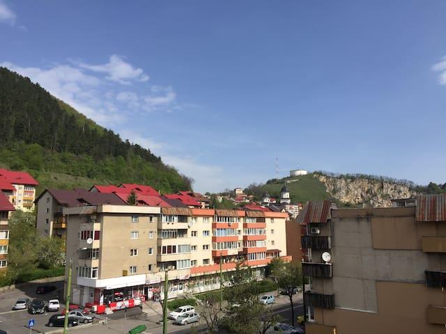 Lily's apartment - Brașov - Wohnung