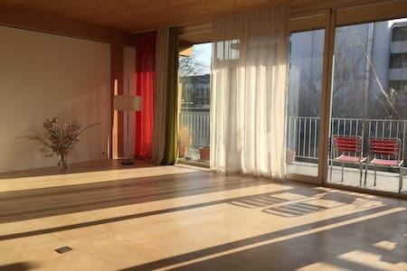 Spacious lodging in Kleinbasel - Basel - Apartmen
