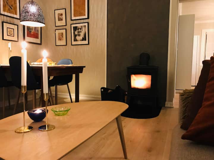 Cosy, practical and central - 40min from Oslo