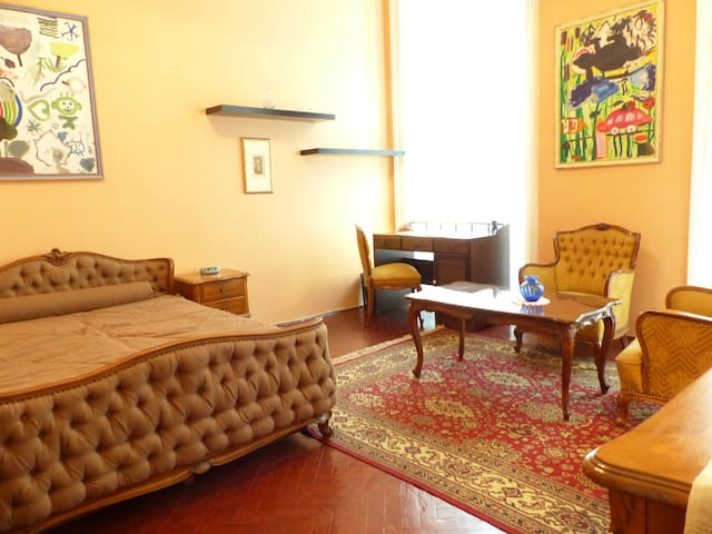 Historical Romantic Nest in the middle of downtown - Budapest - Apartmen