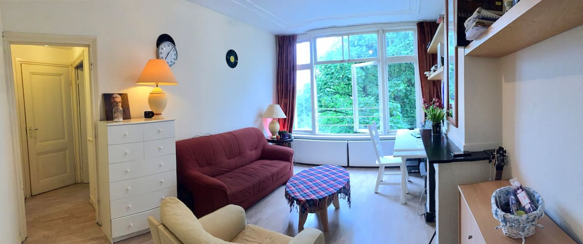 Cozy apartment in the center of Den Haag