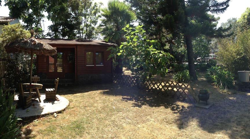 Vilar dos Carvalhinhos - Eco-Cabana 2 - Porto Martins