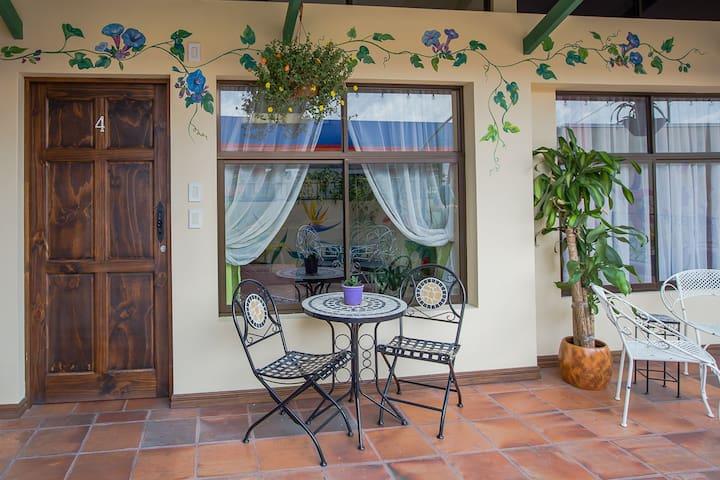 New, light airy 2 bedroom apt with terrace (apt 4)