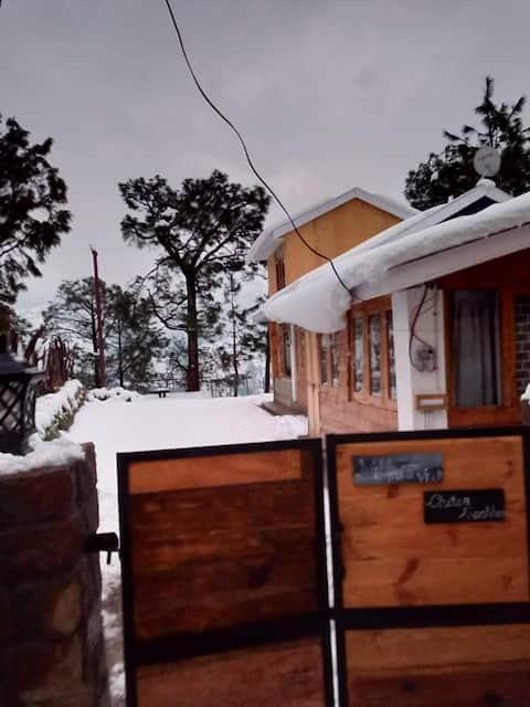 Nikku's villa .... Cottage in the woods