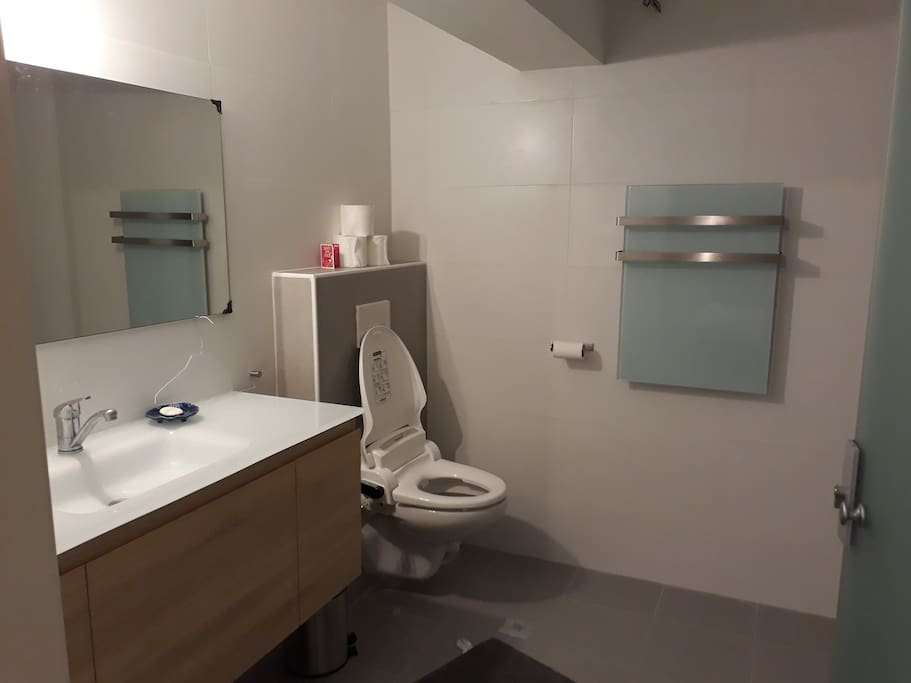 Bathroom with toilet and shower accessible through the bedroom.  There is an additional toilet accessible through the living area