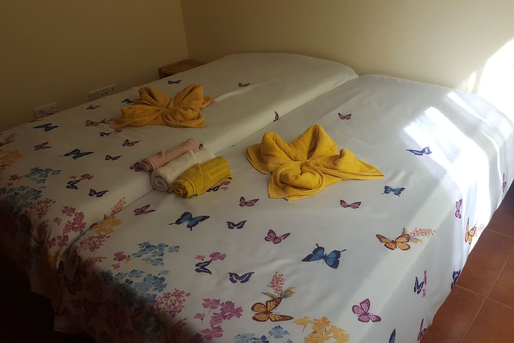 Habitacion privada de dos camas 90 cm