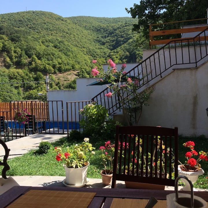 Guesthouse in Tskhneti with pool