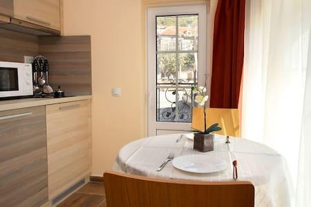 PRETTY STUDIO IN THE OLD TOWN - 8 - 大特尔诺沃 - 酒店式公寓