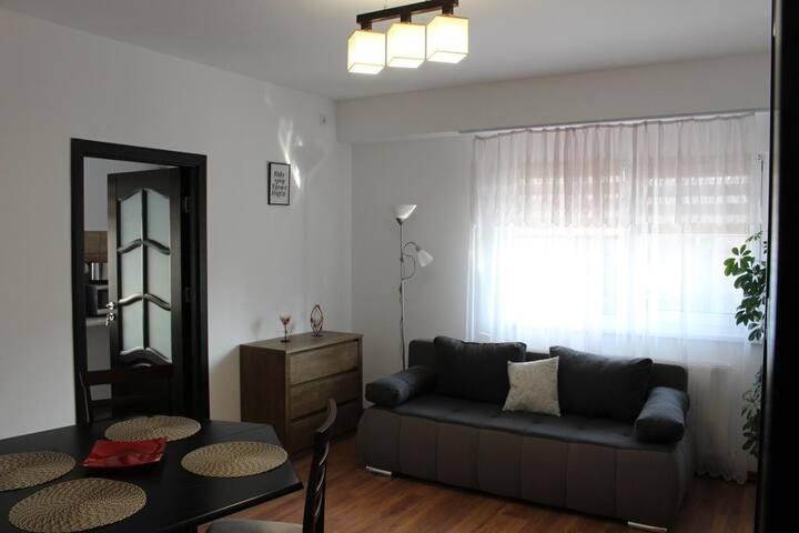 Craiova - 1 Room