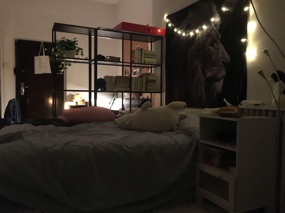 主卧室,与活动区域是书柜隔开的~