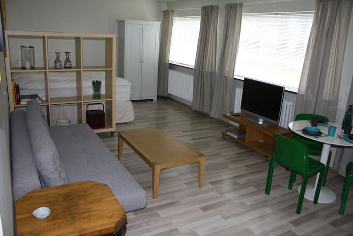 Cosy studio in middle of Reykjavik - Reikiavik - Apartamento