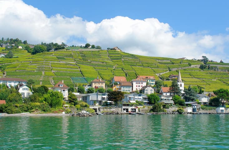charming apartment in Lavaux