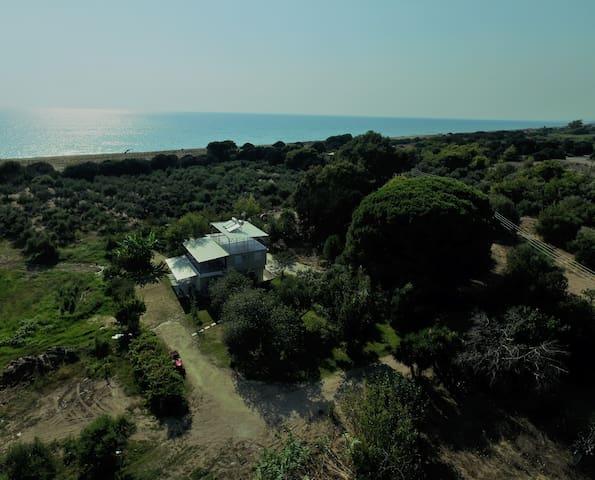Ktima Bilioni 3 near Olympia