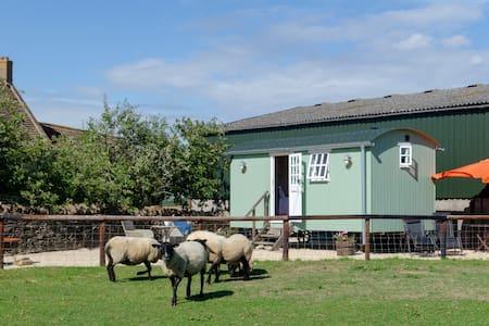 Shepherd's hut on Cotswold Farm near Castle Combe