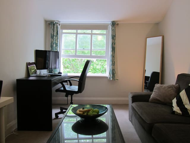 Beautiful cosy single room in the heart of London