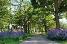 Gridley Park