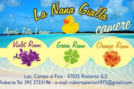 La Nana Gialla (Green Room) - Province of Livorno