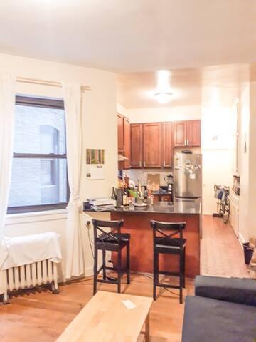 Great room in Brooklyn