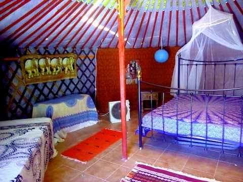 "Yurt ""Olive"" in between Granada and Cordoba"