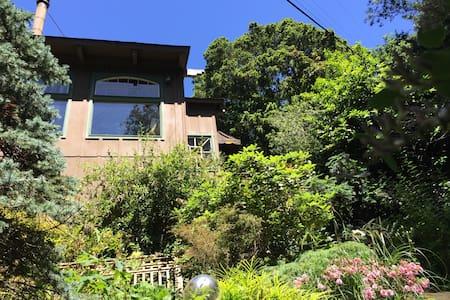 Coastal home in the redwood canopy - Aptos