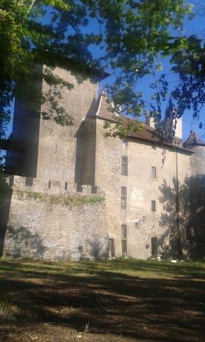 Château médiéval - Charmes-sur-l'Herbasse