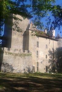 Château médiéval - Charmes-sur-l'Herbasse - Other