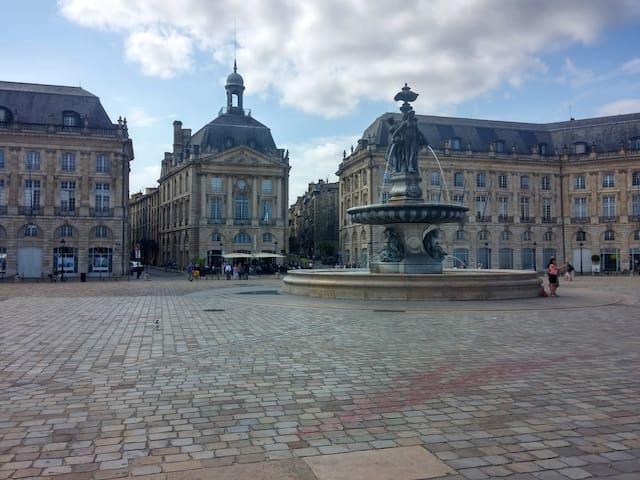 La belle place de la Bourse, le départ des promenades vers le centre historique de Bordeaux. Saint Pierre, son atmosphère, ses restos, ses belles places.