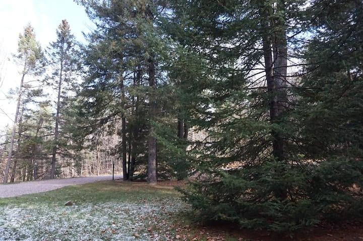 Explore Ottawa & Gatineau Park
