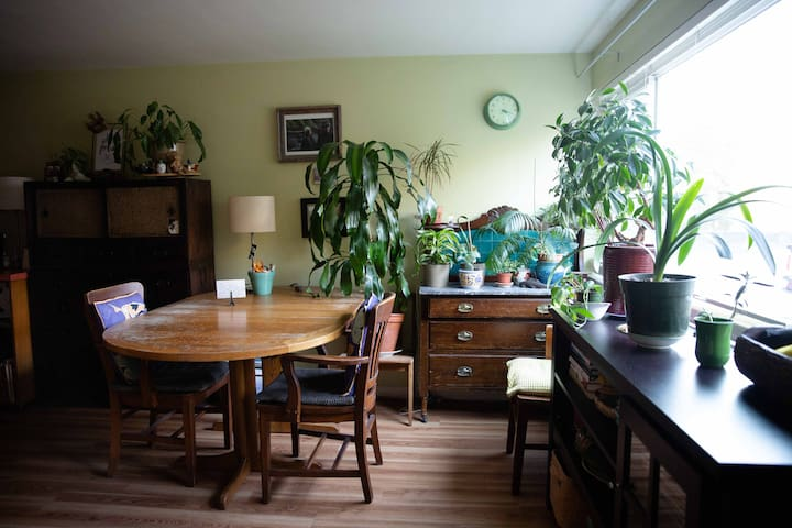 Charming one bed apt - Capitol Hill