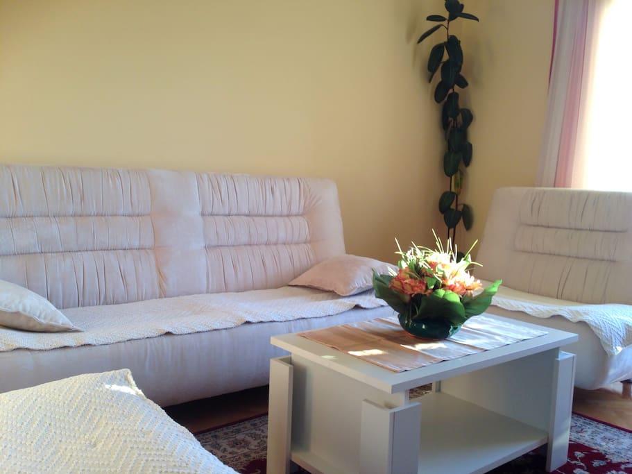 Specoius living room&dinning room with balcony